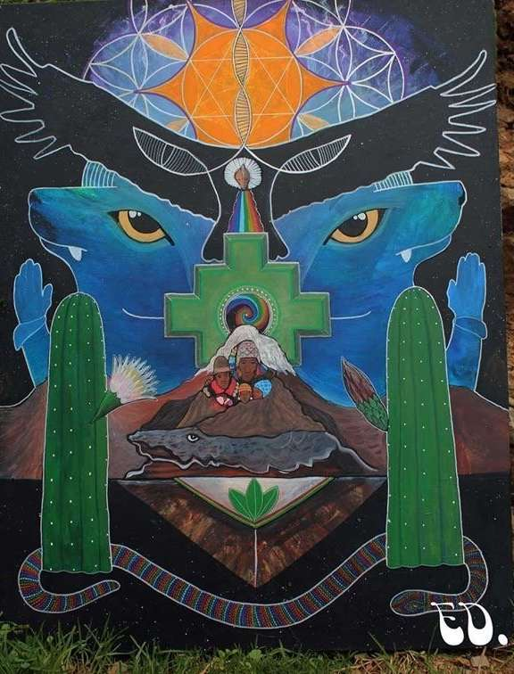 healing with san pedro